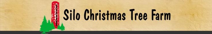 Silo Christmas Tree Farm