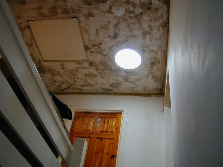 Have a room with no access to natural light? When windows or skylights aren't an option, consider installing a sun tube to cut your lighting costs.