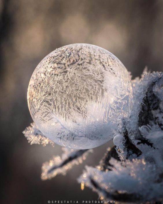 "gyclli: "" A Frozen Soap Bubble in the snow Photography by Anne Sofie Eriksson (@spectatia_) https://www.instagram.com/ """