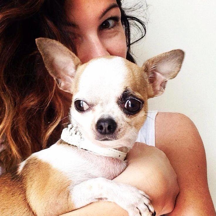 New #Chic4Dog's friends - Welcome <3 | Nuove amiche del nostro eshop - Benvenute!