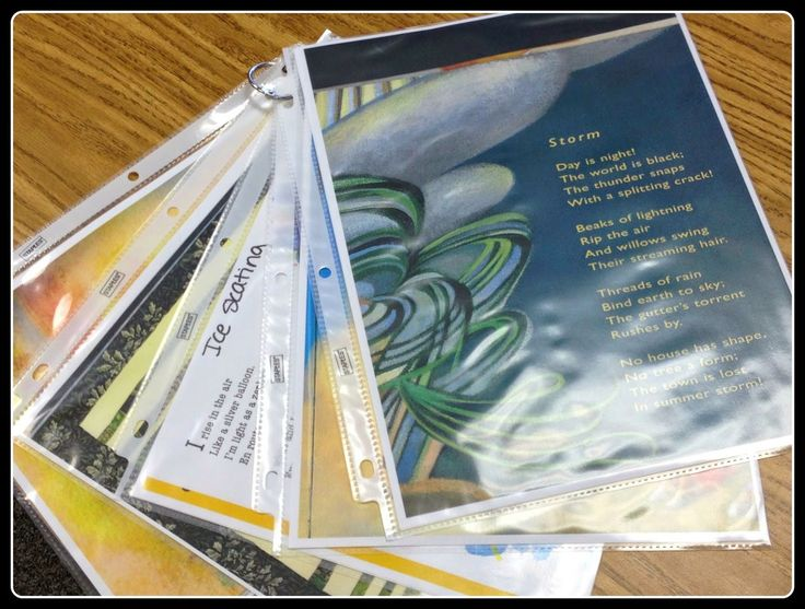 Fifth Grade Freebies: Are You A Poetry Detective?