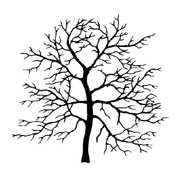 346 best printables trees images on pinterest