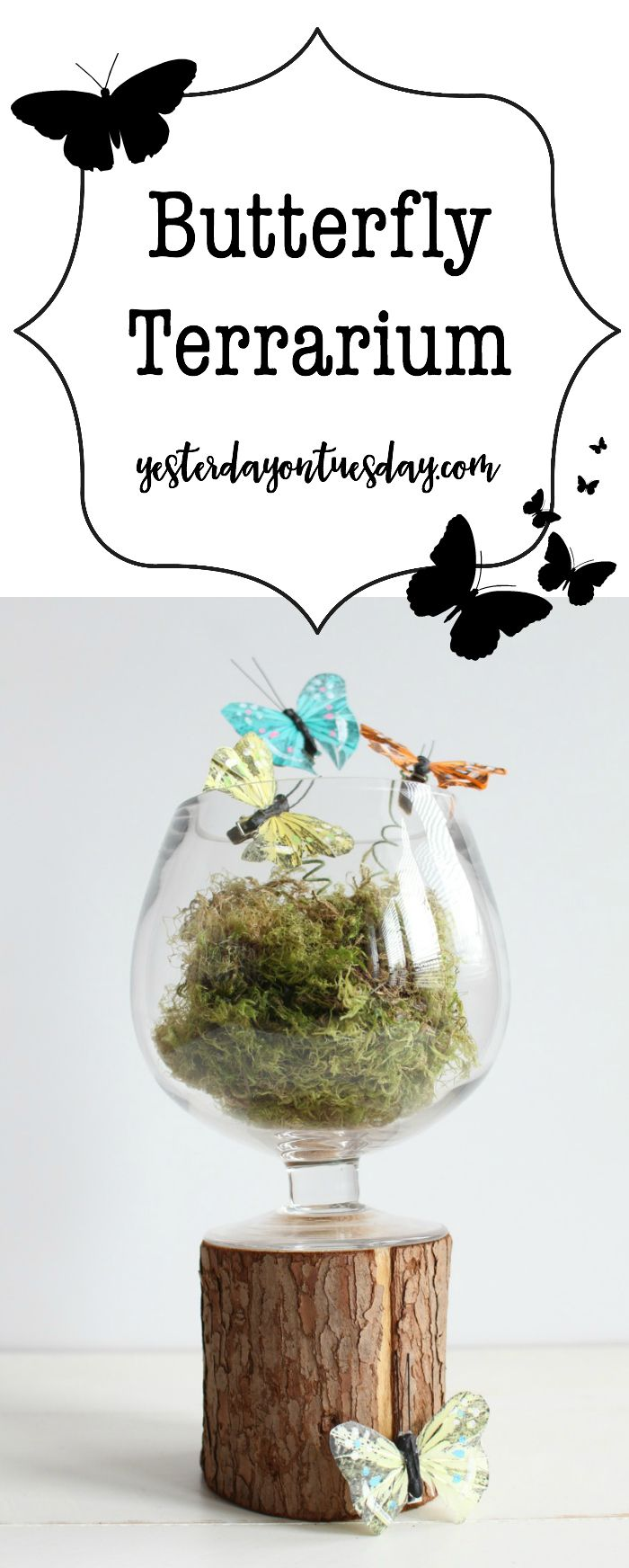 DIY Butterfly Terrarium: How to make a butterfly terrarium, lovely spring decor for your home. spring | decor | butterfly | terrarium