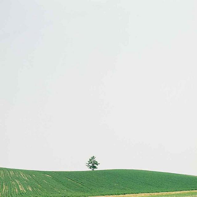Hokkaido 321 by kajico**, via Flickr