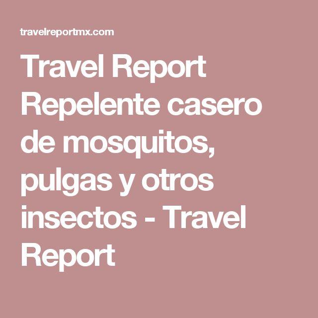 Travel Report Repelente casero de mosquitos, pulgas y otros insectos - Travel Report