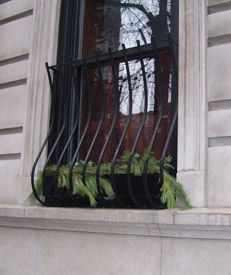 metal window security bars with window boxes | Exterior ...