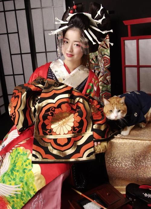 135 best japan images on pinterest japanese kimono japanese art a tayu a high class courtesan and like omg get some yourself some pawtastic adorable cat apparel solutioingenieria Choice Image