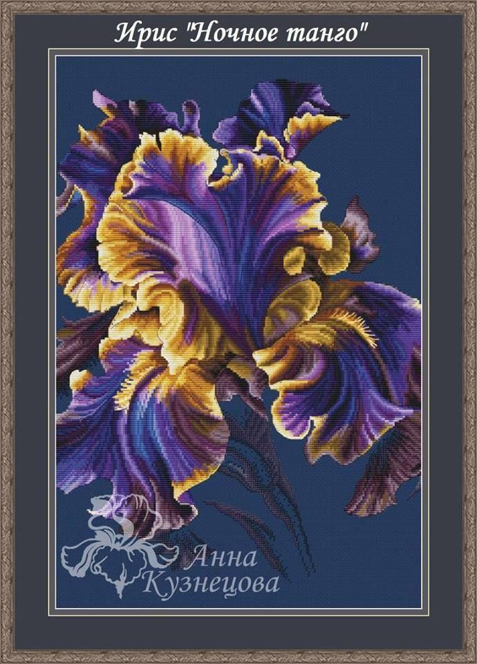 Irysy Seria Cross Stitch Z Photo Painting