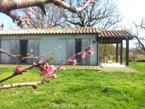#Spring at #AgriturismoPodereArgo #farmhouse #farmstay #travel #holidays #airbnb