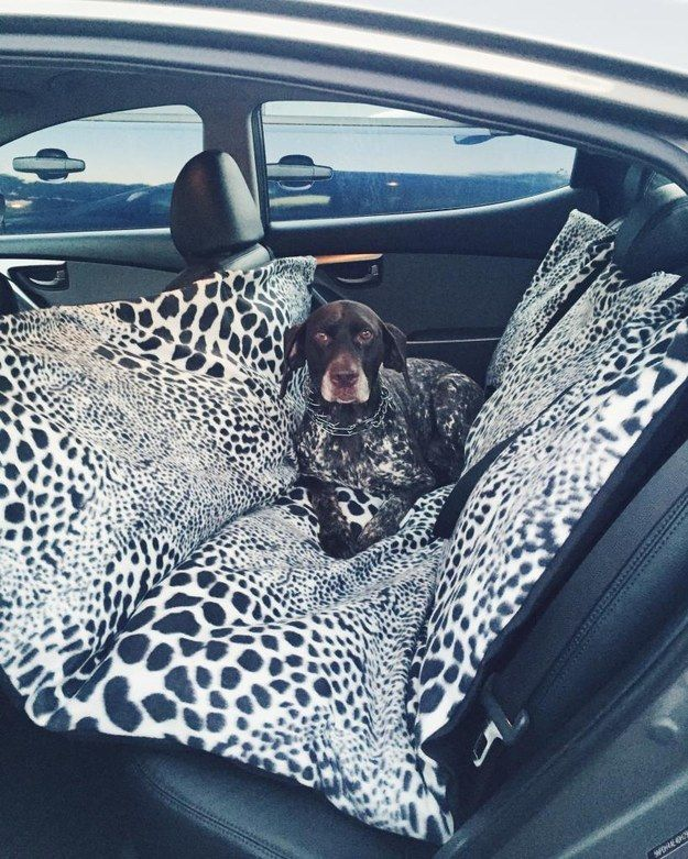 Keep your pet comfy and your car fur-free with this DIY seat cover.