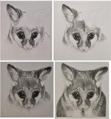 Google Image Result for http://www.art-is-fun.com/image-files/how-to-draw-a-possum.jpg