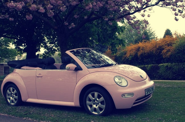 saw a beetle exactly like this and fell in love...hehe