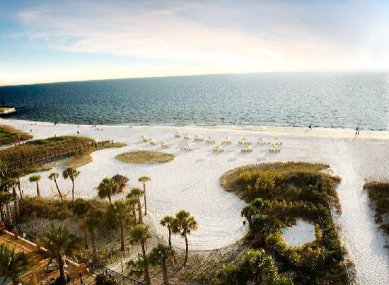 Hyatt Siesta Key Beach Resort, A Hyatt Residence Club (Florida) - Hotel Reviews - TripAdvisor