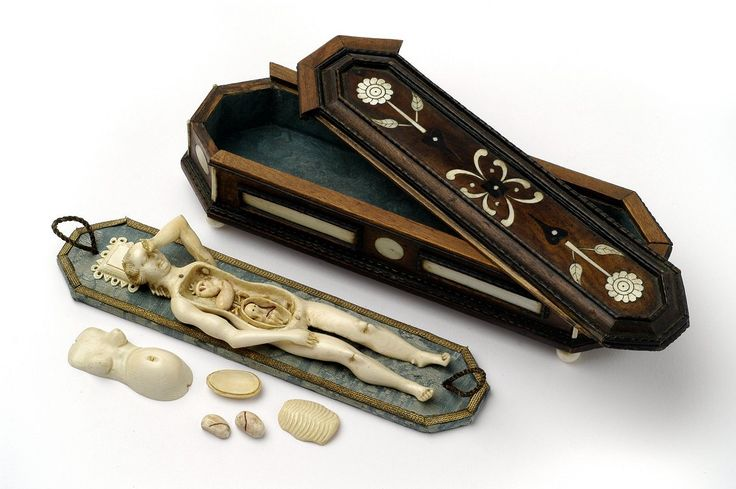 Anatomical model of the female body. Make doctors had their female patients point to the location of their pain and symptoms to preserve their modesty.( I find it a little creepy that she is, 1. covering her face in maidenly shame, and 2. that she is stored in a lovely coffin. ~Renata)