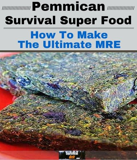 Pemmican Survival Food