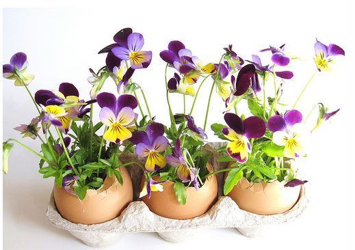 Fun Easter Decorating Tips to Welcome Spring in 2013
