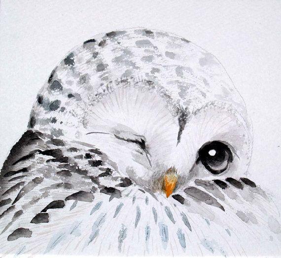 Owl paintingOriginal watercolor owlBlack and White by KURONINJIN
