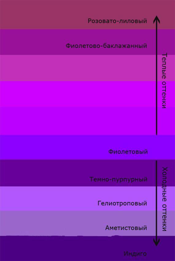 Фиолетовые помидоры против рака - «Здоровье»