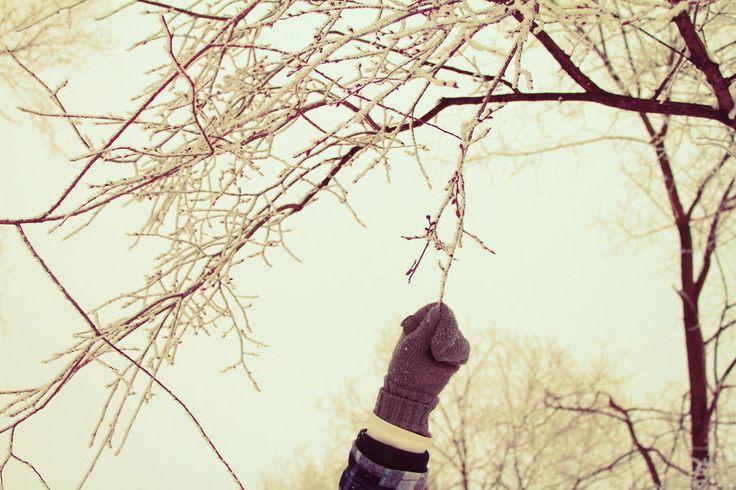 hmm, yummy branch by Renata Elbatat
