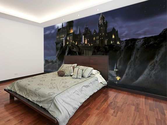 First time to hogwarts harry potter wall mural harry for Bedroom ideas harry potter