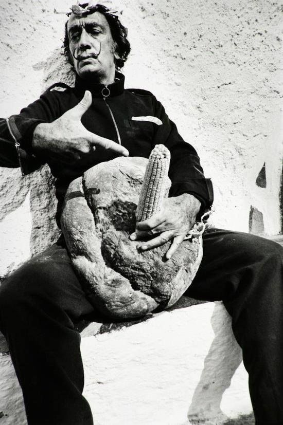 Image result for dali painting of raquel welch