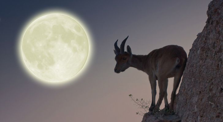Full Moon in Capricorn: Sorting Out Responsibilities With Emotional Dependencies