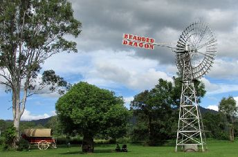 Escape from busy city life and come relax in the foothills of Mt Tamborine at The Bearded Dragon! Come for lunch or make a holiday out of it and stay for the night!