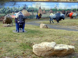 Located on the Bricktown/Downtown border at 1 E. Main Street, the corral holds 20+ buffalo! It is a sight to behold as the buffalo graze amongst beautiful painted murals. Spring/summer tour routes will be posted soon, along with updated locations of downtown and statewide buffalo.