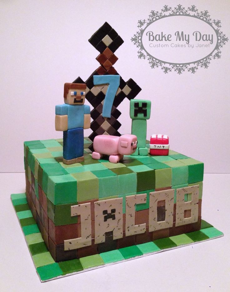 Minecraft cake with Steve, creeper, pig, iron sword and TNT www.facebook.com/CustomByJanet