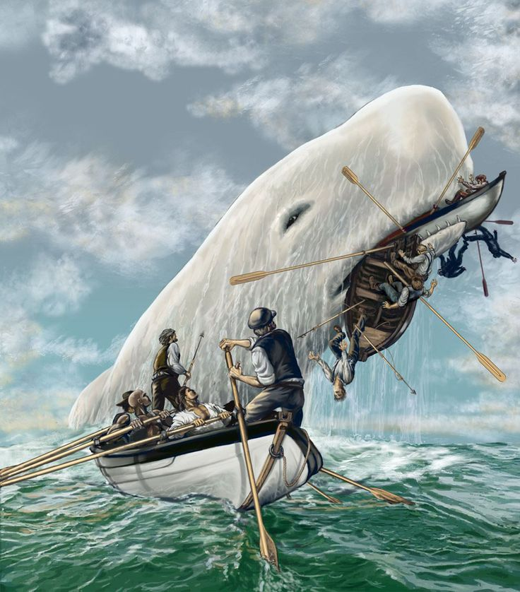 Moby dick whale