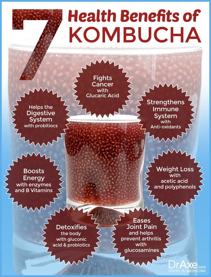 7 Health Benefits of Kombucha Infograph