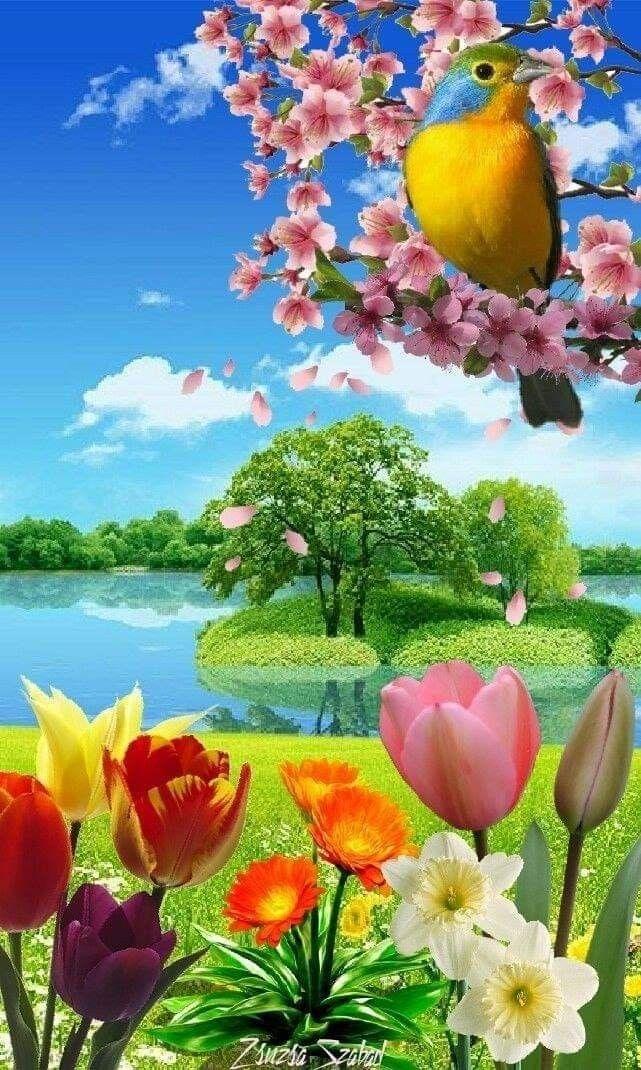 13 Paisajes de flores naturales