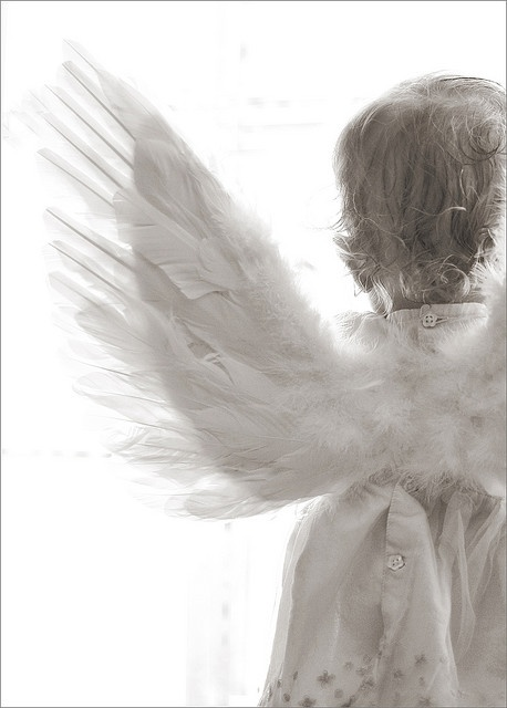 Little Angel Wings