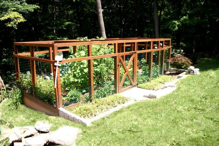 130 best images about garden design on pinterest gardens for Low maintenance vegetable garden ideas