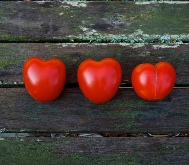 What's the Difference between Indeterminate and Determinate Tomatoes?