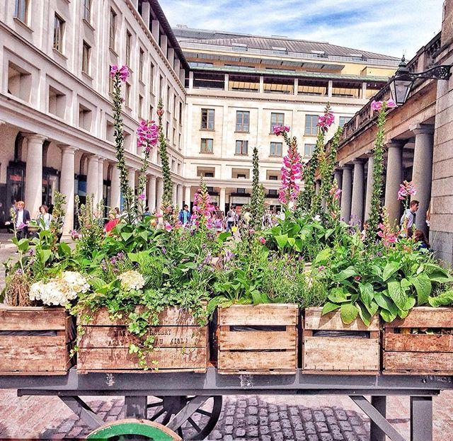 < p r e t t y • t h i n g > ☘ And suddenly in Covent Garden... This!     e poi ti trovi davanti un carretto pieno di fiori nel mezzo di Covent Garden...  #coventgarden #cgafterhours #londonthroughmycam