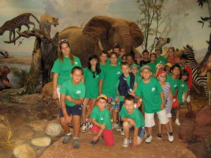 Galería de fotos » Excursiones - Museo de la Fauna Salvaje (2)   GMR summercamps