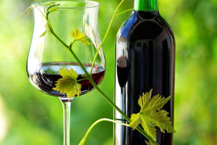 Vino, el gran antioxidante