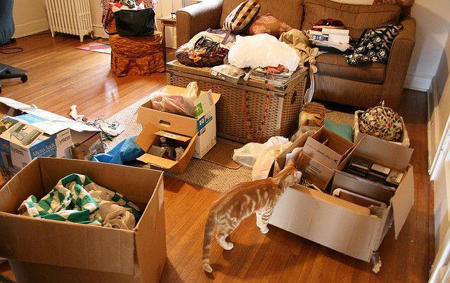 Iar vrei să ascunzi o grămadă de lucruri în debara?  Nu te grăbi, în curând le poți înghesui pe BișNiț.ro!