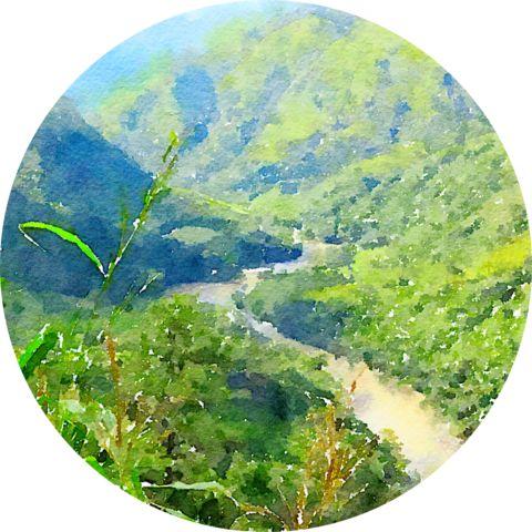 Arabica Guatemala Huehuetenango Arrayàn