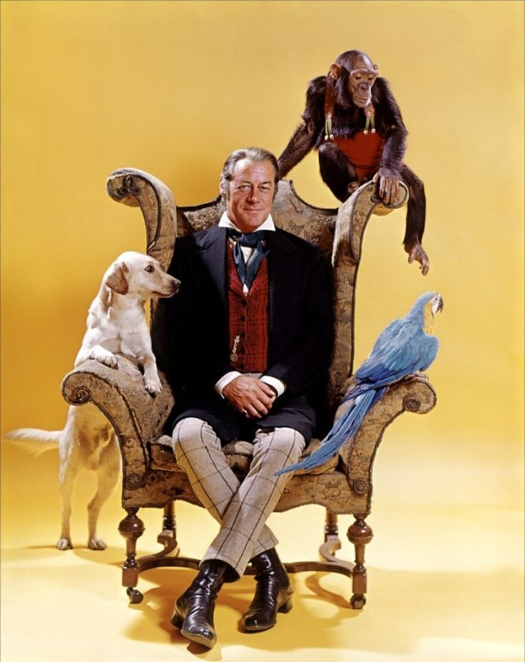 Doctor Dolittle cares so deeply about the animals he can communicate with, he is considered insane. #caregiver #archetype #brandpersonality