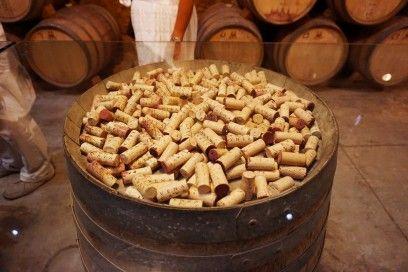 Vena Cava Winery - Valle De Guadalupe, Ensenada, Baja California