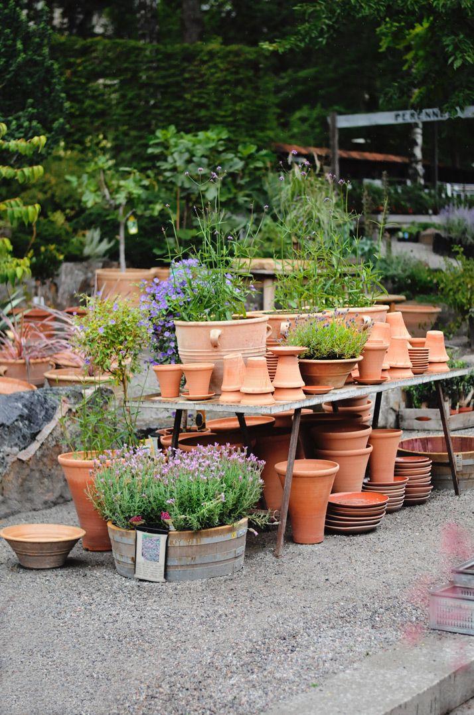 1474 Best Garden Center Ideas Images On Pinterest Shop 640 x 480