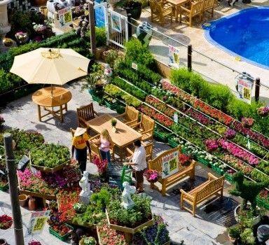 17 Best 1000 images about GardenCenterDisplay on Pinterest Gardens