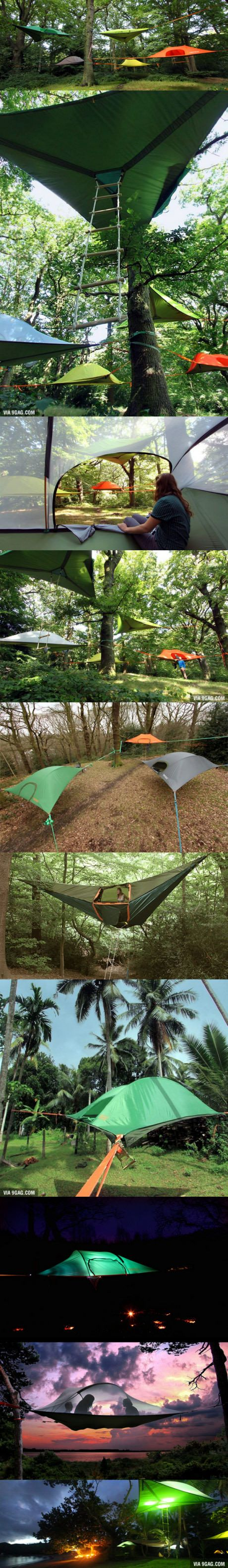 Tree tents!                                                                                                                                                                                 More