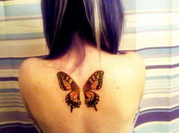 best 25 butterfly wing ideas on wing