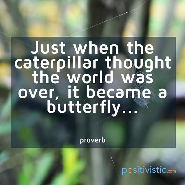 Quotes About Change And Growth: 17+ Best Images About Positivistic Quotes On Pinterest