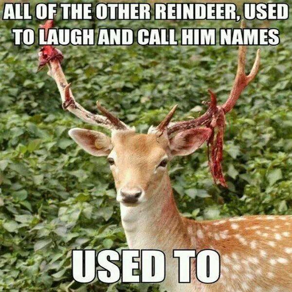 Rudolphs Revenge christmas rudolph christmas humor funny christmas christmas memes dark christmas