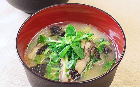 豆苗とまいたけの炒め味噌汁