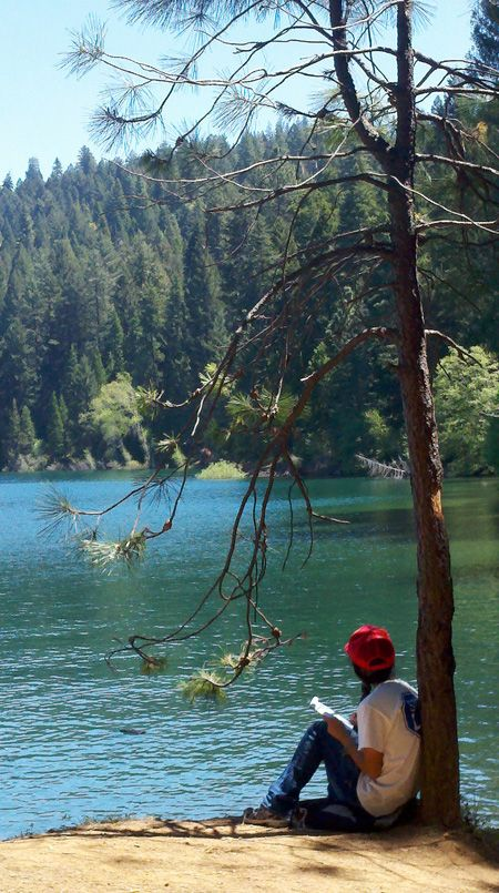 Best 25 national forest ideas on pinterest national for Best places to fish near me